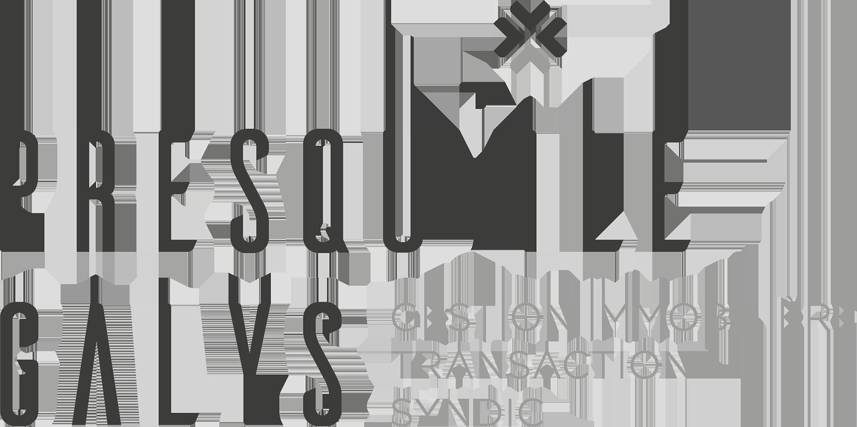 Régie Presqu'ile, gestion immobilière (location, vente) à Lyon